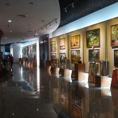 吳哥全景博物館用戶圖片