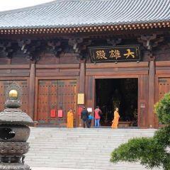 寶山寺用戶圖片