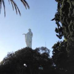 聖露西亞濕地公園用戶圖片