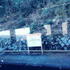 箱根登山纜車張用戶圖片