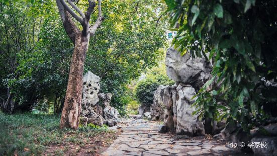 Dazhongting Park