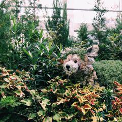 佛蘭克林植物園用戶圖片