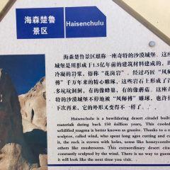 hai sen chu lu guai shi cheng User Photo