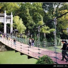 三閣公園用戶圖片