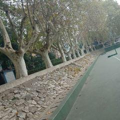Jiangsu University User Photo