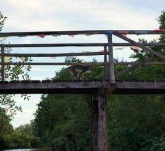 亞庇市濕地中心用戶圖片