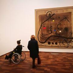 米羅美術館用戶圖片