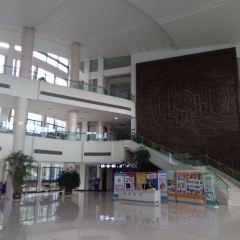 浙江師範大學圖書館用戶圖片