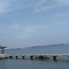 東湖游泳池用戶圖片