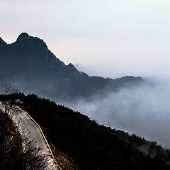 Ankang Fenghuangshan Forest Park User Photo