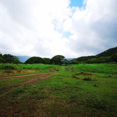 Puu Ualakaa州立公園用戶圖片
