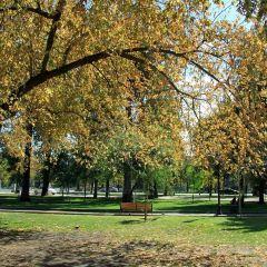 Parque Forestal User Photo