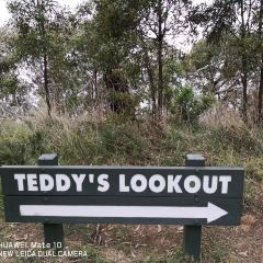 Teddy's Lookout User Photo