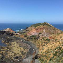 Cape Schanck Lighthouse User Photo