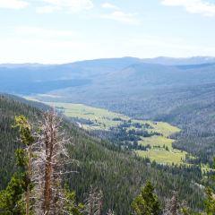 Black Canyon Creek User Photo