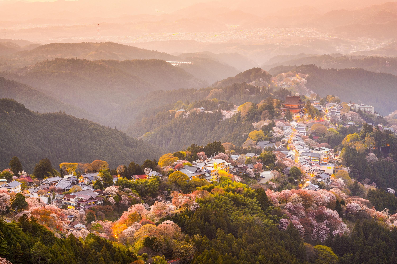 Great Things to See Besides Deer in Nara