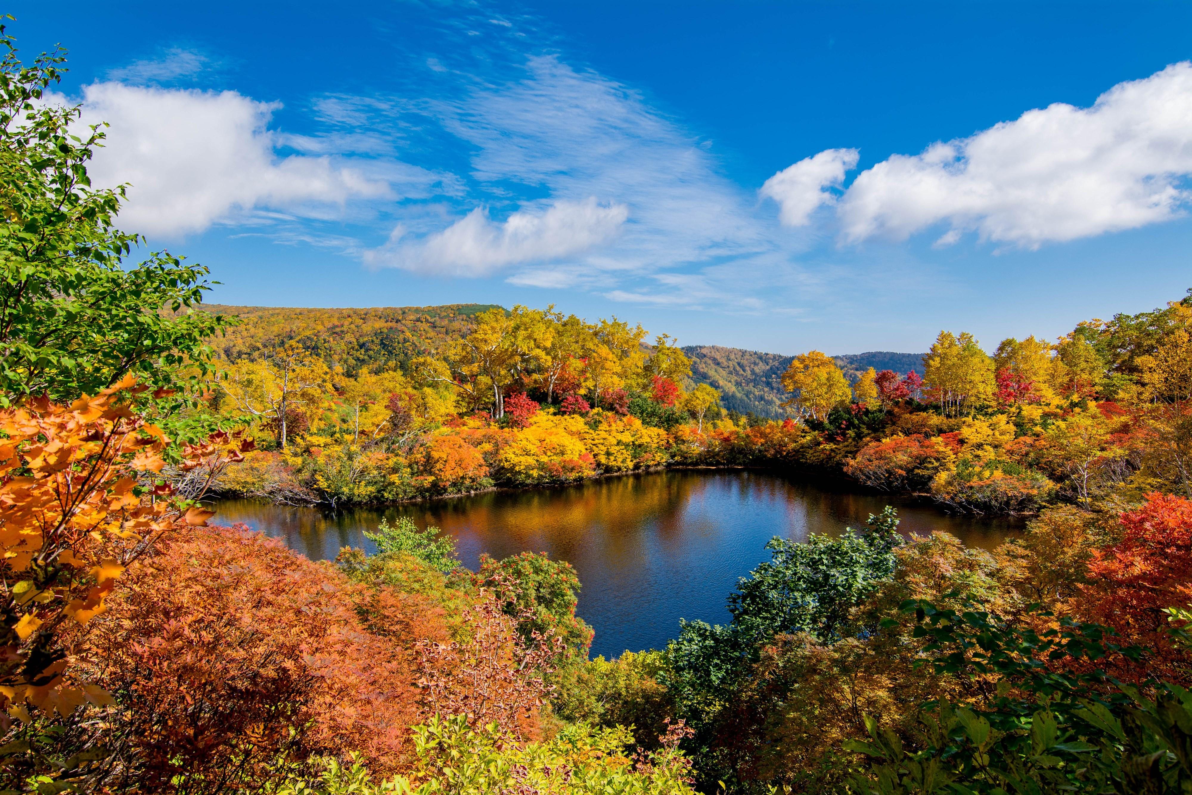 Hokkaido's Breathtaking Fall Scenery