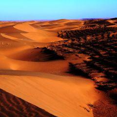 Maowusu Desert User Photo