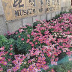 昆明市博物館用戶圖片