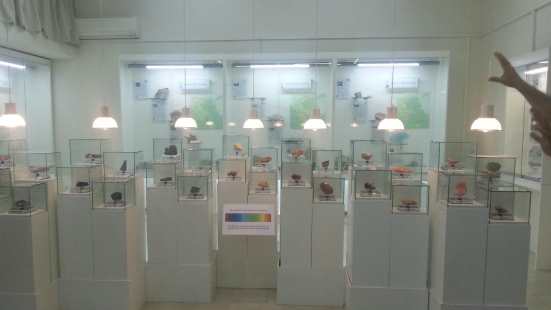 Museum of Mineralogy and Petrology