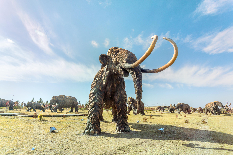 扎賚諾爾猛獁旅遊區