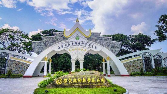 熱帶花卉園