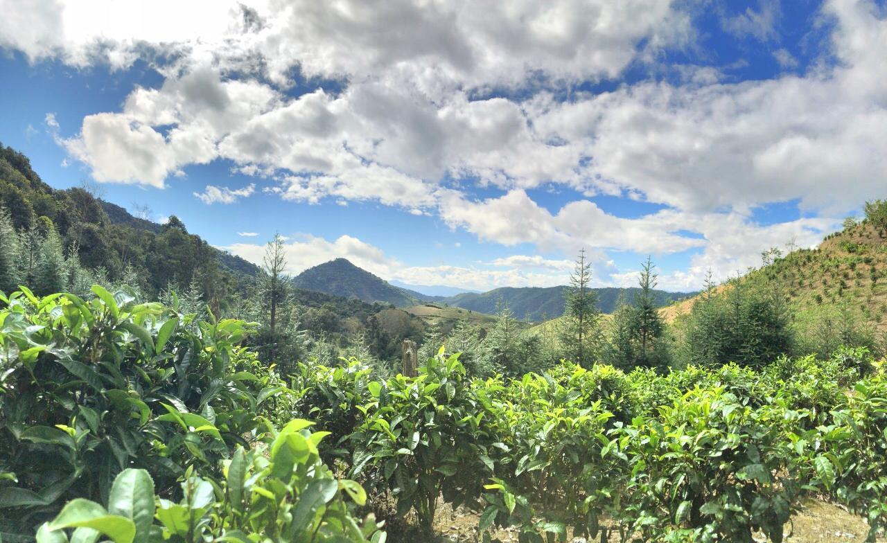 Bulang Mountain