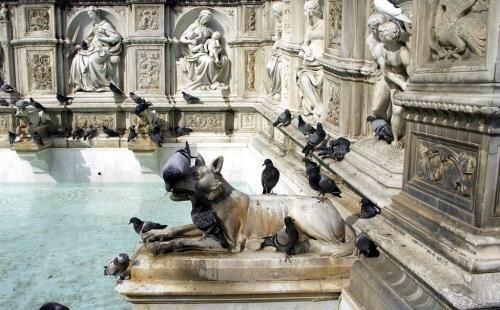 喷泉的水还是很清澈的,应该是定期的更换的薪水,也是一处处古老