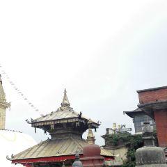 Maju Deval User Photo