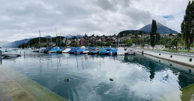 Town of Spiez