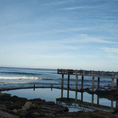 Victoria Bay用戶圖片