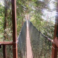神山國家公園用戶圖片