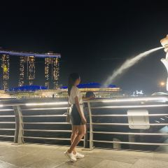 Merlion Park User Photo