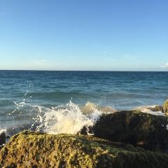 Sandy Beach用戶圖片