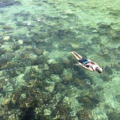加雅島用戶圖片
