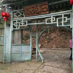 Qingqing World User Photo