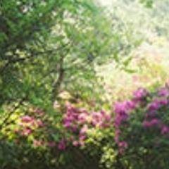 상효원 여행 사진