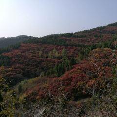 Baizhang Yashuiku User Photo