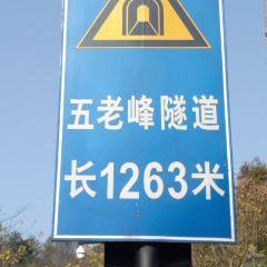 五老峰隧道用戶圖片