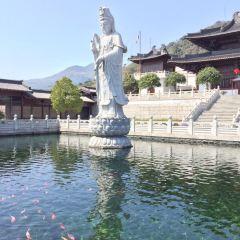 Daci Temple User Photo