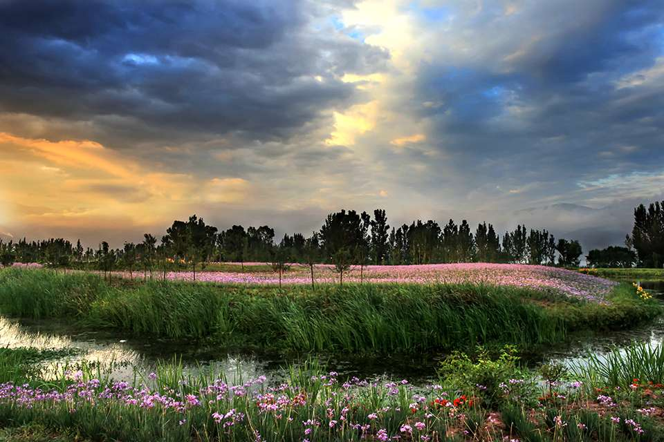 Qionghai National Wetland Park Admission Ticket