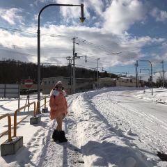 Asahiyama Memorial Park User Photo