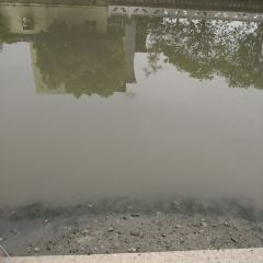 大川瀑布用戶圖片