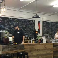 Blackbird Espresso by Coffee NQ User Photo