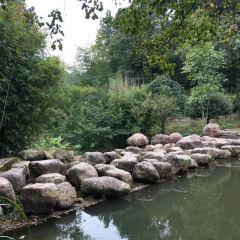 Qinxi Xianggu Scenic Area User Photo