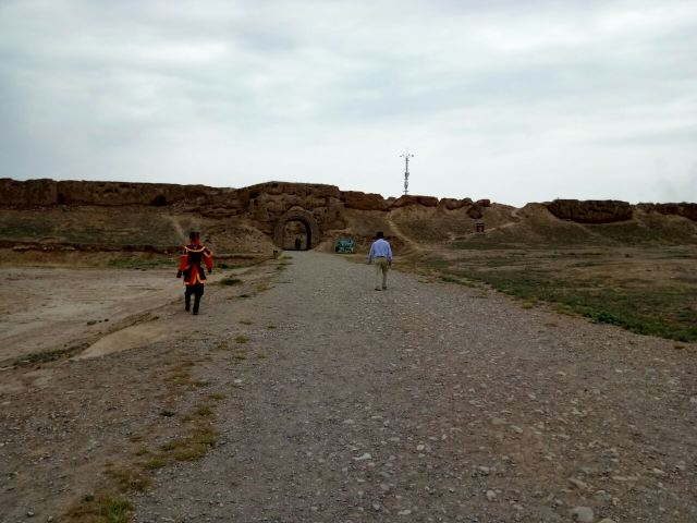 Ningxia Great Wall Museum