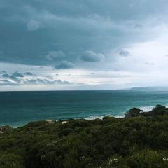 Eagle Rock Marine Sanctuary User Photo
