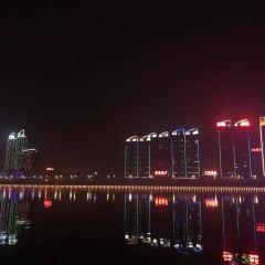 Hanzhong Canola Fields User Photo
