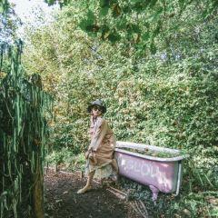 盧瓦爾河畔肖蒙園林區用戶圖片