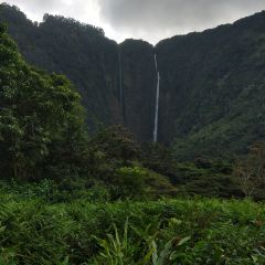 Waipio Valley Lookout User Photo